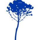 Bluetree95